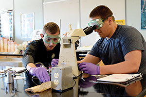 A photo of two students in a lab, one of which is looking into a microscope