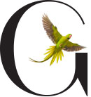 The letter G with a tropical bird inside